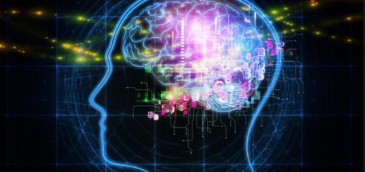 И все-таки мозг цифровой!