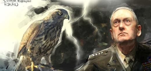 Генерал «Хаос» Джеймс Мэттис: как любитель книг стал кумиром корпуса морской пехоты США
