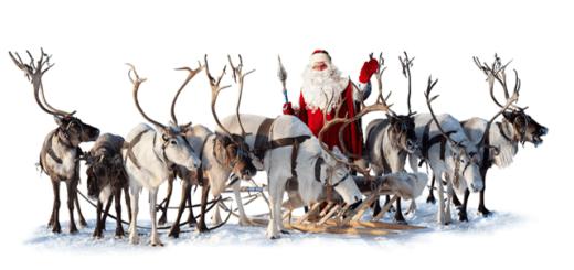 Олени Санта-Клауса