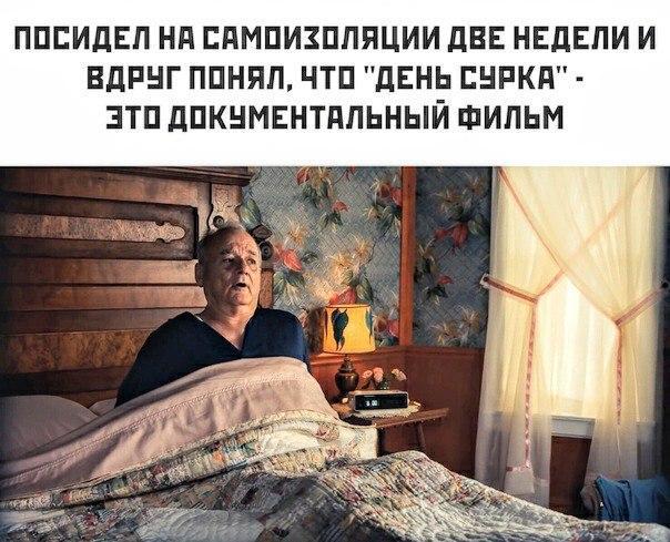 Сидим дома ...